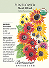 Sunflower Flash Blend Organic HEIRLOOM Seeds