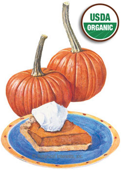 Pumpkin Sugar Pie Organic HEIRLOOM Seeds