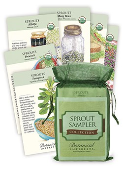 Sprout Sampler Seed Collection