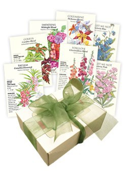 Lovely Shade Garden Seed Collection