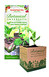 Recycled Paper Pots 4 inch (4 pack)