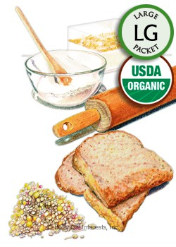Sprouts Ancient Grains Mix Organic Seeds (LG)