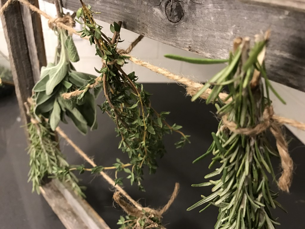 Herbs: Tips for Preserving