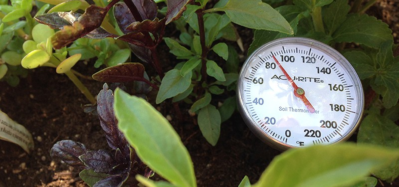 Soil Temperature for Higher Germination Rates