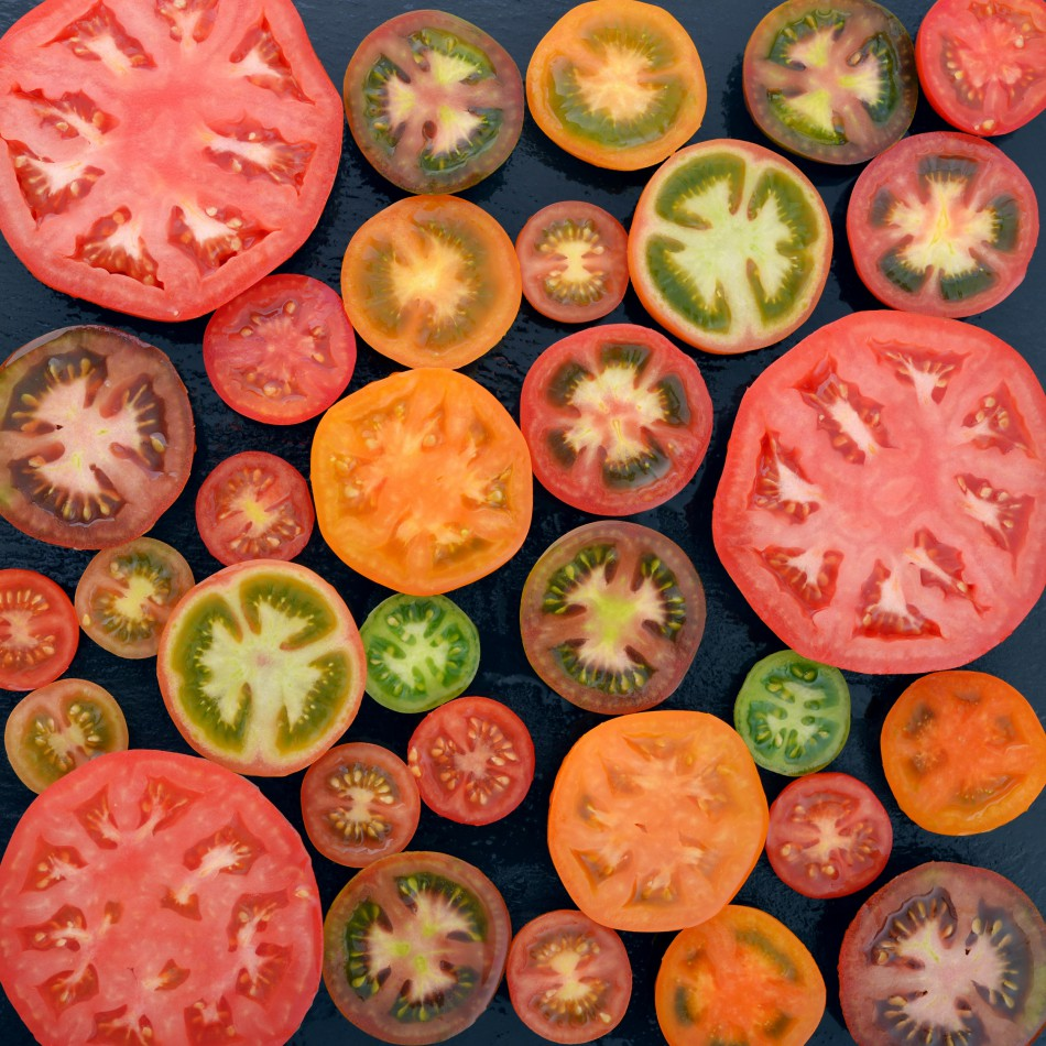 Tomatoes: Sow and Grow Guide